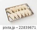 生餃子 白バック 22839671