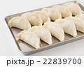 生餃子 白バック 22839700