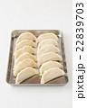 生餃子 白バック 22839703