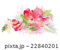 水彩画 プランツ 植物のイラスト 22840201
