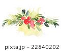 水彩画 プランツ 植物のイラスト 22840202