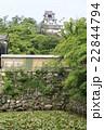 新緑の高知城 22844794
