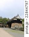 新緑の高知城 22844797