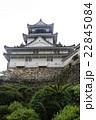 新緑の高知城 22845084