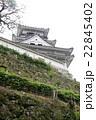 新緑の高知城 22845402