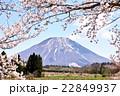 大山 伯耆富士 春の写真 22849937