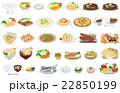 今日のご飯 22850199