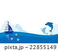 イルカ 海豚 動物のイラスト 22855149