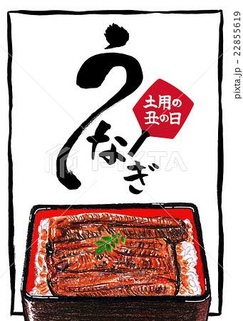 土用の丑の日ポスターのイラスト素材 22855619 Pixta