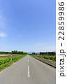 一本道 車道 北海道の写真 22859986
