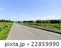 一本道 車道 北海道の写真 22859990