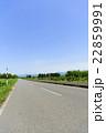 一本道 車道 北海道の写真 22859991