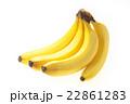 バナナ(フィリピン産) 22861283