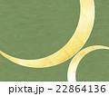 背景素材 和紙 和柄のイラスト 22864136