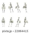 3DCG 人間骨格 持ち上げ姿勢セット 45度刻み 22864415