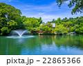 春の井の頭公園 22865366