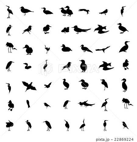 Set of black and white silhouettes of birds: dove 22869224
