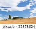 牧草ロール 麦畑 青空の写真 22873624