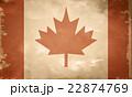 Canadian grunge flag 22874769