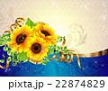 向日葵の夏らしい綺麗なフレーム 22874829