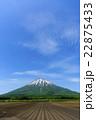 羊蹄山と畑 22875433