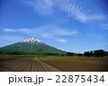 羊蹄山と畑 22875434