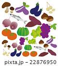秋の素材〜食べ物〜 22876950