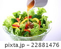 野菜サラダにドレッシングをかける 22881476