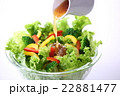 野菜サラダにドレッシングをかける 22881477