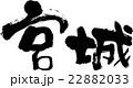 宮城 宮城県 県名のイラスト 22882033