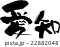 愛知(県名03) 22882048