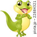 beautiful green lizard 22884321