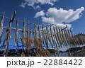 干物作り 広島/鞆の浦 22884422