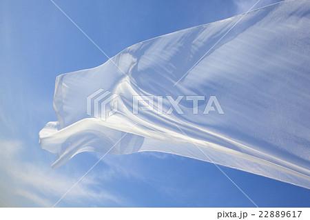 風になびく布 22889617