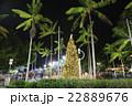 ケアンズの夜景(クリスマス時期) 22889676