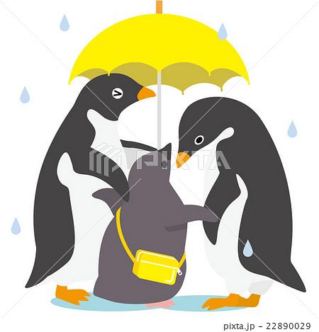 アデリーペンギン 雨の日家族 22890029