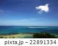 沖縄の青い海 22891334