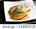 煮魚 味噌煮 鯖の写真 22893319