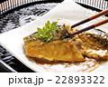煮魚 味噌煮 鯖の写真 22893322