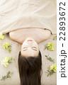 ビューティーイメージ 22893672