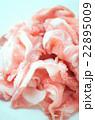 豚肉 スライス 22895009