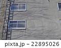 蔦が伸び行く家 22895026
