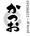 筆文字 文字 日本語のイラスト 22896340