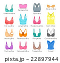Bra design vector flat colorful icons set 22897944