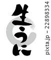 筆文字 文字 日本語のイラスト 22898334
