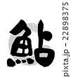 筆文字 文字 漢字のイラスト 22898375
