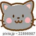 猫(黒猫) 22898987