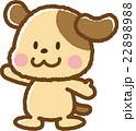 犬 22898988