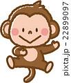 猿 22899097