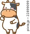 牛 動物 素材のイラスト 22899099